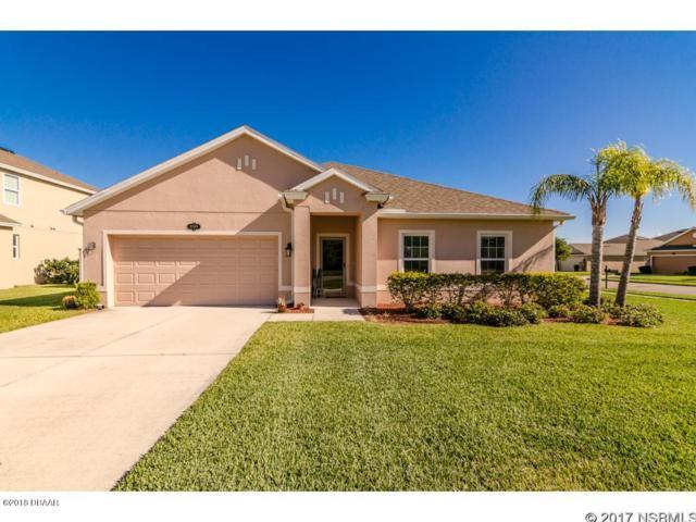 2703 Dayflower Cove, New Smyrna Beach, FL 32168 (MLS #1041703) :: Beechler Realty Group