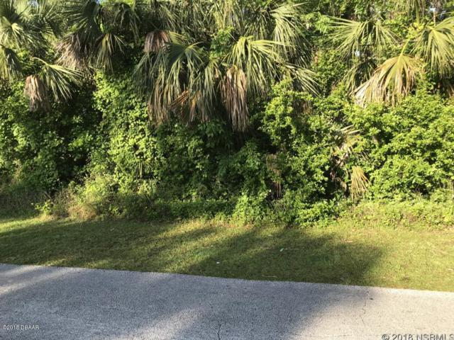 1200 James Street, New Smyrna Beach, FL 32168 (MLS #1042123) :: Memory Hopkins Real Estate