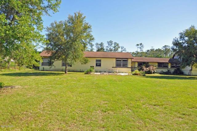 3730 Lettuce Lane, New Smyrna Beach, FL 32168 (MLS #1042164) :: Memory Hopkins Real Estate