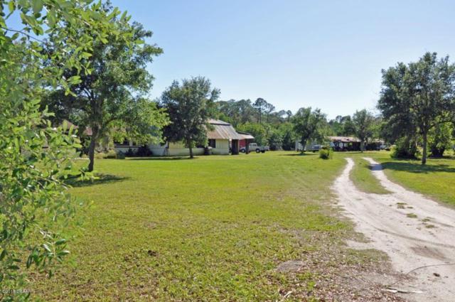 3730 Lettuce Lane, New Smyrna Beach, FL 32168 (MLS #1042165) :: Memory Hopkins Real Estate