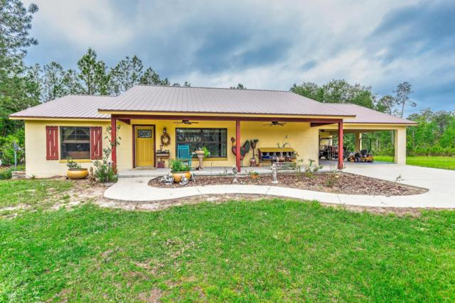 215 W Twin Lakes Road, Bunnell, FL 32110 (MLS #1042202) :: Memory Hopkins Real Estate