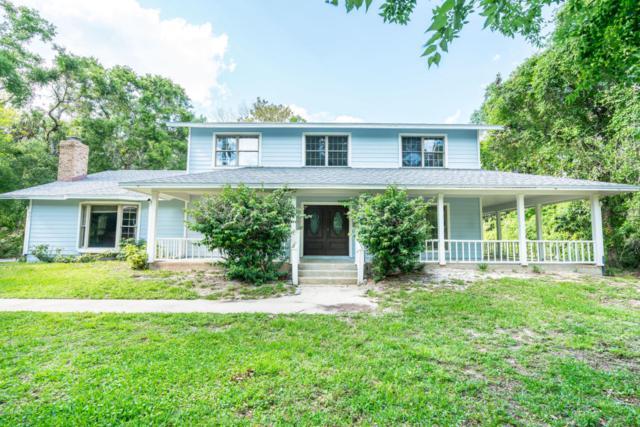 667 Quercus Street, Port Orange, FL 32127 (MLS #1042612) :: Beechler Realty Group