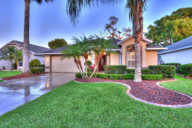 6009 Heron Pond Drive, Port Orange, FL 32128 (MLS #1042765) :: Beechler Realty Group