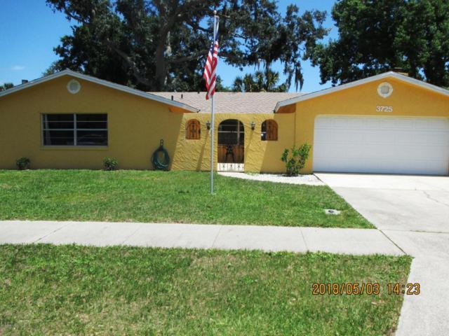 3725 Paige Street, Port Orange, FL 32129 (MLS #1042775) :: Beechler Realty Group