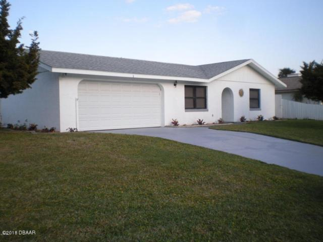 3 Sand Dune Drive, New Smyrna Beach, FL 32169 (MLS #1043794) :: Beechler Realty Group