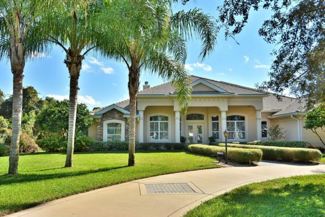 820 W Pheasant Run Court, Port Orange, FL 32127 (MLS #1043863) :: Beechler Realty Group