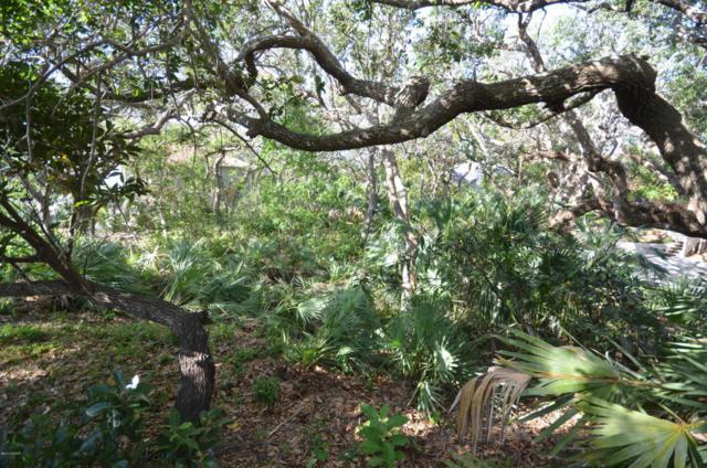4386 S Sea Mist Drive, New Smyrna Beach, FL 32169 (MLS #1044159) :: Memory Hopkins Real Estate