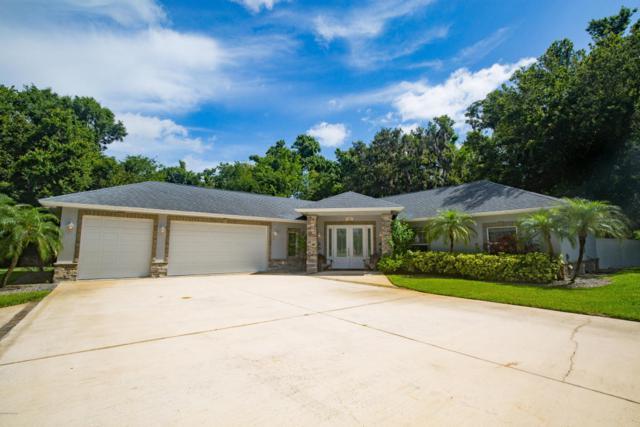 385 Calle Grande Street, Ormond Beach, FL 32174 (MLS #1044324) :: Beechler Realty Group
