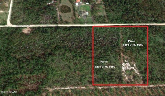 4130 Swamp Deer Road, New Smyrna Beach, FL 32168 (MLS #1044332) :: Cook Group Luxury Real Estate