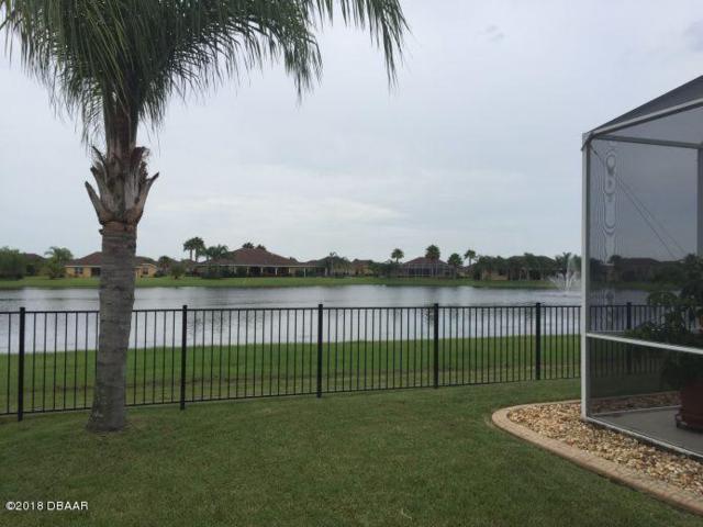 557 Caro Court, New Smyrna Beach, FL 32168 (MLS #1044915) :: Beechler Realty Group
