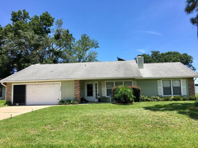 3107 Tamarind Drive, Edgewater, FL 32141 (MLS #1045021) :: Beechler Realty Group