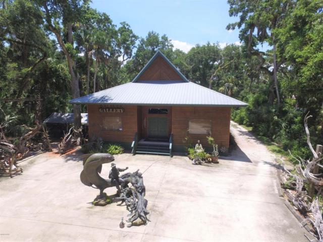 5928 N Ocean Shore Boulevard, Palm Coast, FL 32137 (MLS #1045046) :: Memory Hopkins Real Estate
