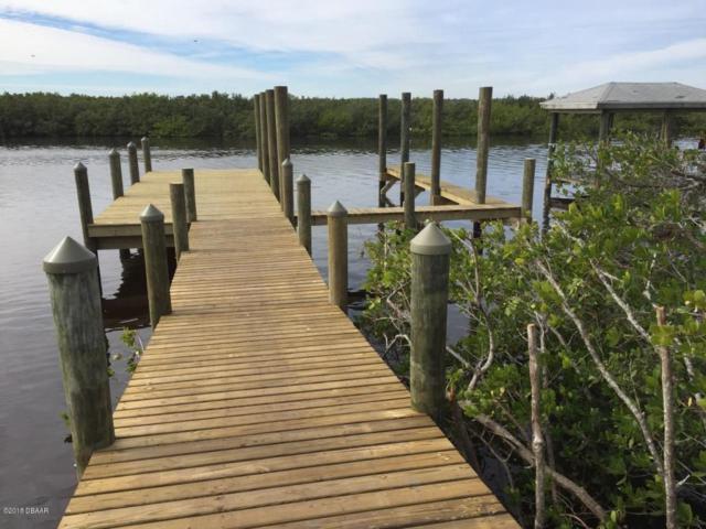 3890 S Peninsula Drive, Port Orange, FL 32127 (MLS #1045047) :: Beechler Realty Group