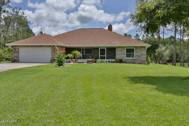 251 Barrel Turn, Ormond Beach, FL 32174 (MLS #1045156) :: Memory Hopkins Real Estate