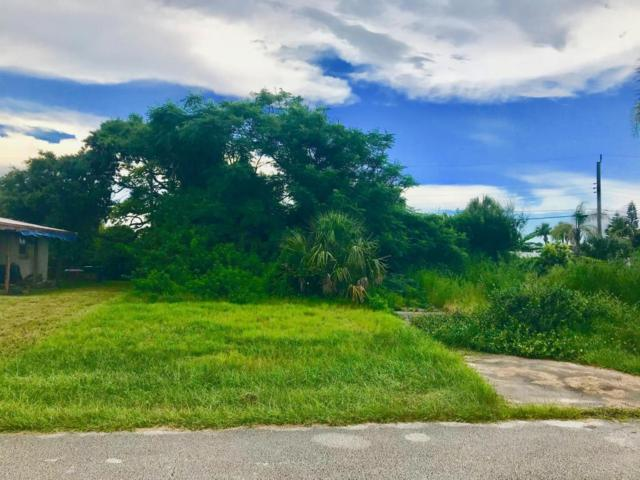 19 Briggs Drive, Ormond Beach, FL 32176 (MLS #1045183) :: Beechler Realty Group