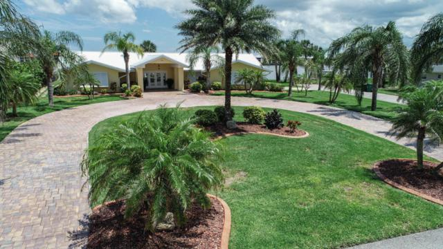 404 Desoto Drive, New Smyrna Beach, FL 32169 (MLS #1045290) :: Beechler Realty Group