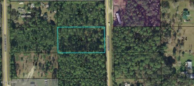 1820 Satinwood Street, Bunnell, FL 32110 (MLS #1045413) :: Memory Hopkins Real Estate
