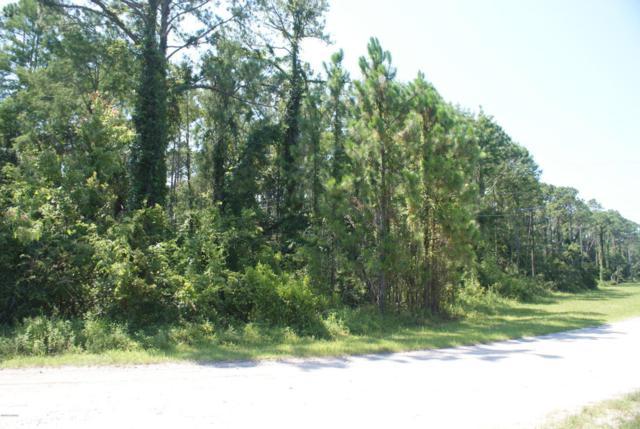 0 Roosevelt Boulevard, Daytona Beach, FL 32124 (MLS #1045420) :: Memory Hopkins Real Estate