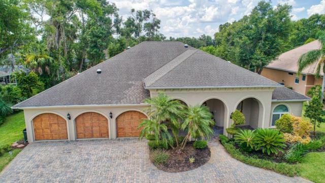 119 Squirrel Lane, Ormond Beach, FL 32174 (MLS #1045650) :: Beechler Realty Group