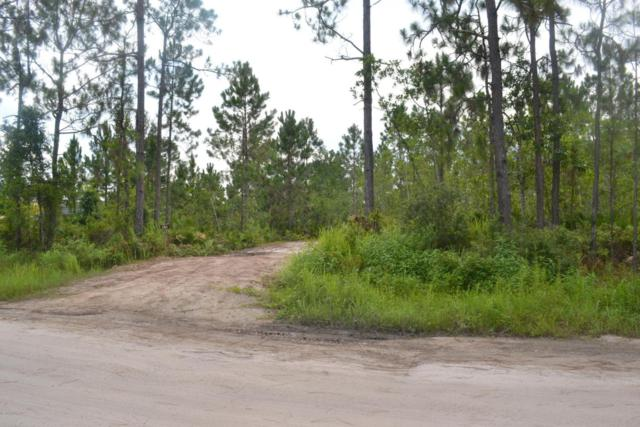 870 Twisted Pine Drive, New Smyrna Beach, FL 32168 (MLS #1045661) :: Memory Hopkins Real Estate