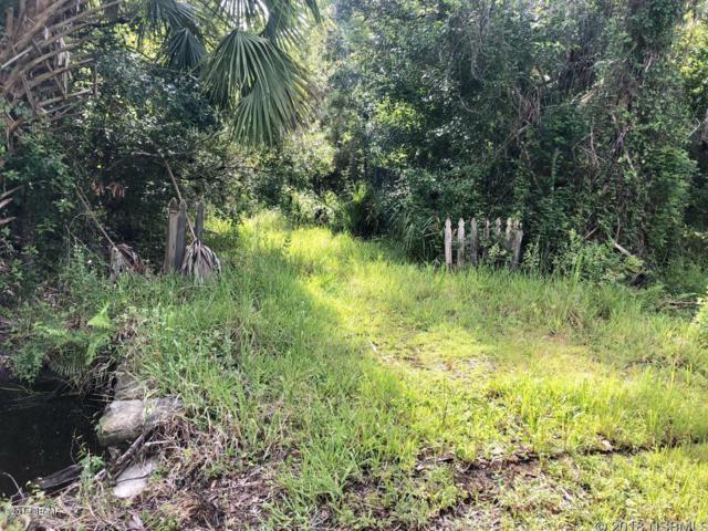 2421 Guava Drive, Port Orange, FL 32128 (MLS #1045945) :: Beechler Realty Group