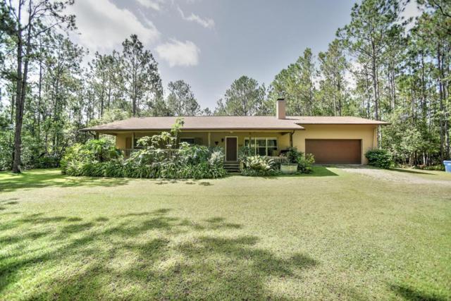311 Evergreen Lane, Ormond Beach, FL 32174 (MLS #1046812) :: Beechler Realty Group