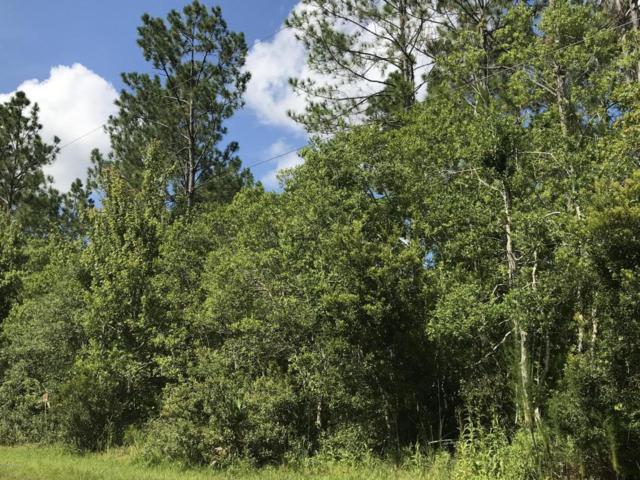 379 Sugar Pine Lane, Ormond Beach, FL 32174 (MLS #1046927) :: Beechler Realty Group