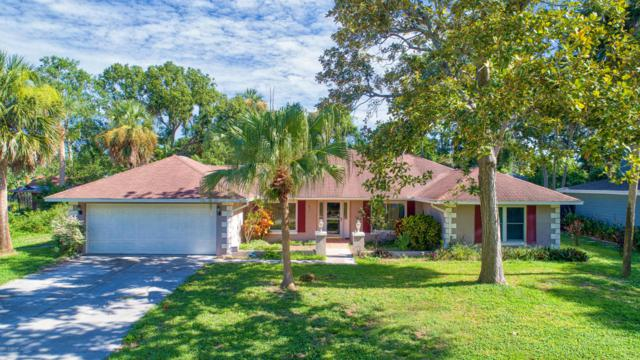 13 Sandcastle Drive, Ormond Beach, FL 32176 (MLS #1046950) :: Beechler Realty Group