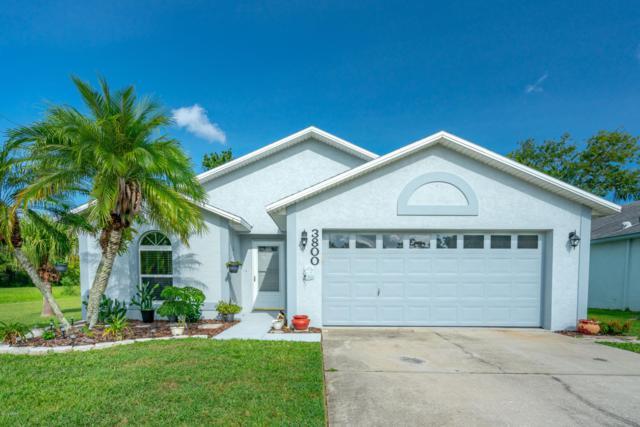 3800 Grove View Lane, Port Orange, FL 32129 (MLS #1047779) :: Memory Hopkins Real Estate
