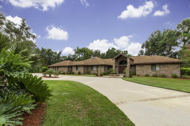 6175 Shoreline Circle N, Port Orange, FL 32127 (MLS #1048159) :: Cook Group Luxury Real Estate