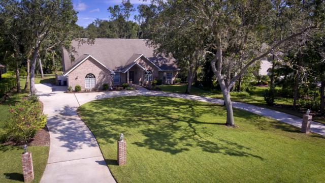 59 Shadow Creek Way, Ormond Beach, FL 32174 (MLS #1048168) :: Beechler Realty Group