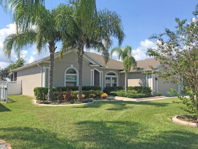 691 Grape Ivy Lane, New Smyrna Beach, FL 32168 (MLS #1048353) :: Beechler Realty Group