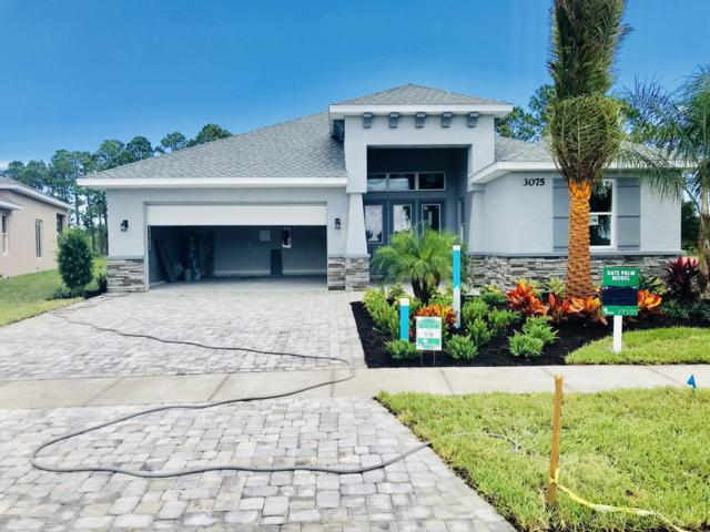 3016 King Palm Dr Lot 128, New Smyrna Beach, FL 32168 (MLS #1048770) :: Beechler Realty Group
