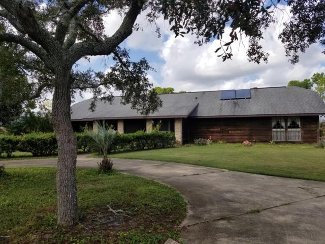 101 Pine Tree Drive, Ormond Beach, FL 32174 (MLS #1048910) :: Beechler Realty Group