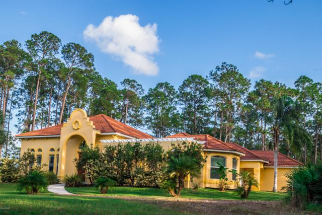 12 Remington Road, Ormond Beach, FL 32174 (MLS #1048956) :: Cook Group Luxury Real Estate