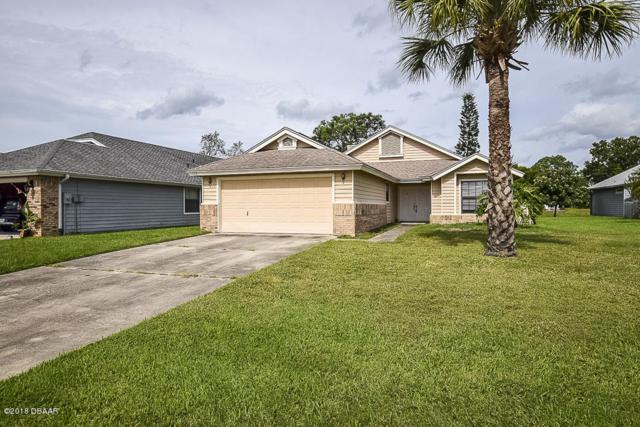 117 Wood Ibis Court, Daytona Beach, FL 32119 (MLS #1049134) :: Memory Hopkins Real Estate