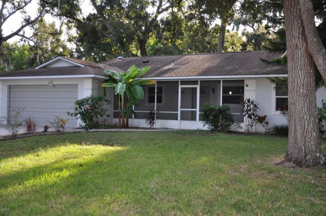 3306 Mango Tree Drive, Edgewater, FL 32141 (MLS #1049164) :: Memory Hopkins Real Estate