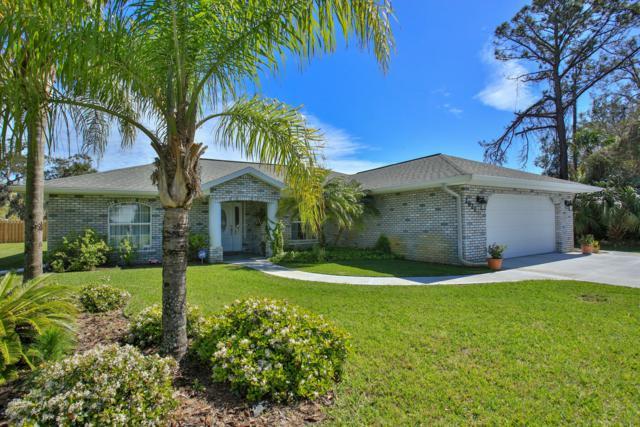 2821 Pine Tree Drive, Edgewater, FL 32141 (MLS #1049199) :: Memory Hopkins Real Estate