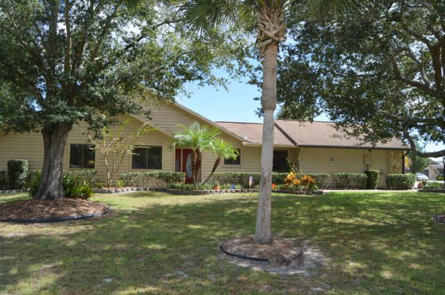 101 White Ibis Court, Daytona Beach, FL 32119 (MLS #1049371) :: Memory Hopkins Real Estate