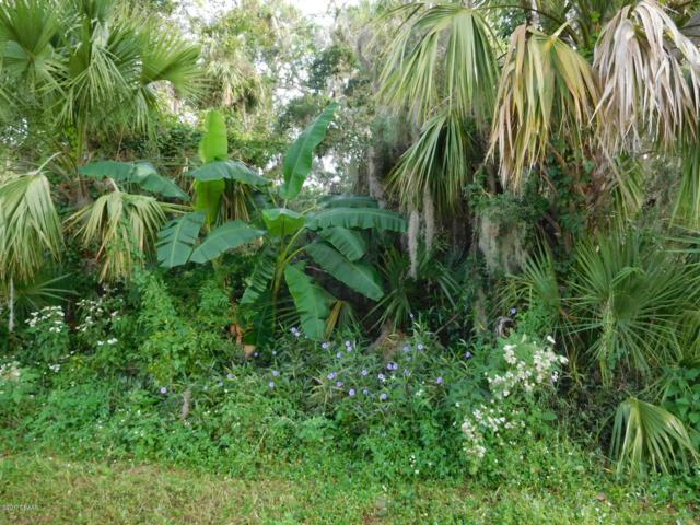 0 Lime Tree Drive, Edgewater, FL 32141 (MLS #1050277) :: Beechler Realty Group