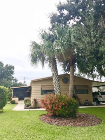 4332 Sailfish Circle, Edgewater, FL 32141 (MLS #1050304) :: Beechler Realty Group
