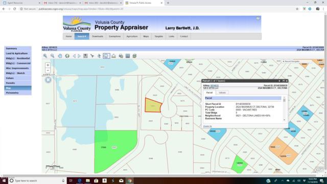 2524 Maximus Court, Deltona, FL 32738 (MLS #1050456) :: Beechler Realty Group