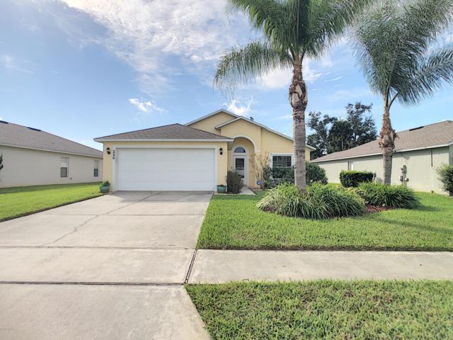 226 Tree Branch Lane, Edgewater, FL 32141 (MLS #1050476) :: Beechler Realty Group