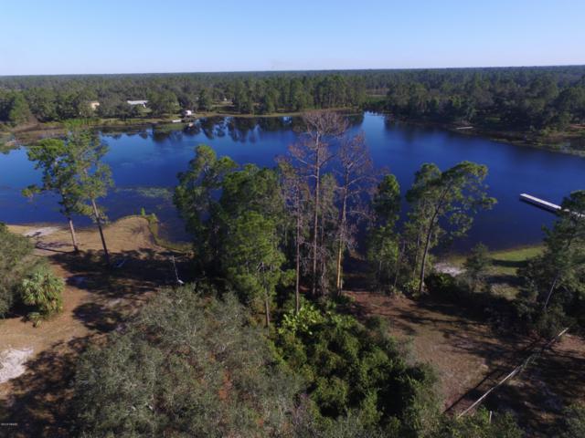 1 Blackwater Oaks Drive, Eustis, FL 32736 (MLS #1050621) :: Memory Hopkins Real Estate