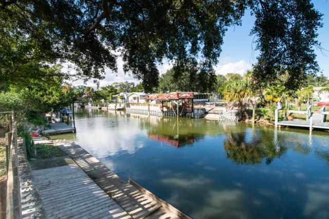 173 Lewis Street, Edgewater, FL 32141 (MLS #1051052) :: Cook Group Luxury Real Estate