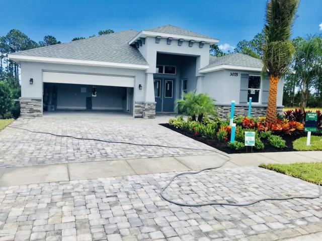 3009 King Palm Lot 118, New Smyrna Beach, FL 32168 (MLS #1051104) :: Beechler Realty Group