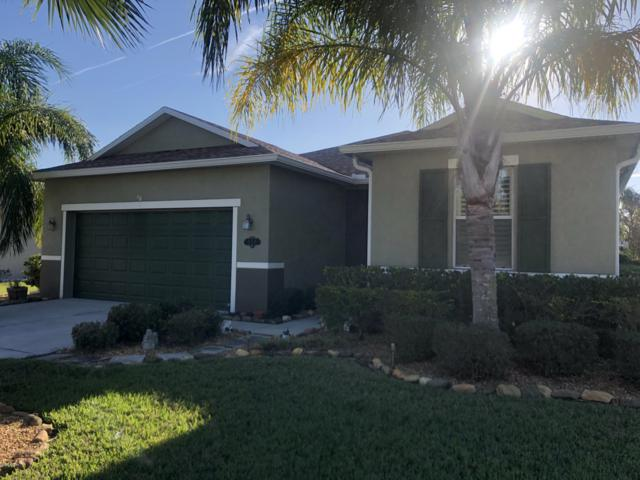 248 Thornberry Branch Lane, Daytona Beach, FL 32124 (MLS #1051337) :: Beechler Realty Group