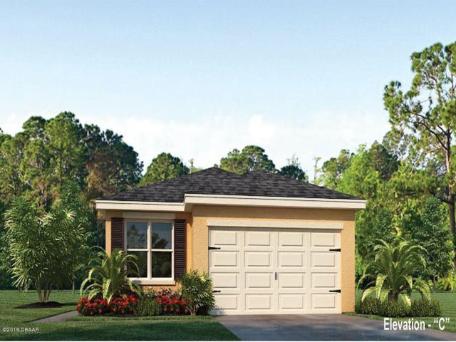 567 Armoyan Way, New Smyrna Beach, FL 32168 (MLS #1051385) :: Beechler Realty Group