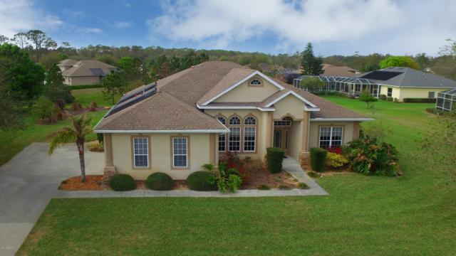 3408 Castlebar Circle, Ormond Beach, FL 32174 (MLS #1052200) :: Beechler Realty Group