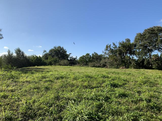 104 S Oceanview Avenue, Ponce Inlet, FL 32127 (MLS #1053509) :: Memory Hopkins Real Estate